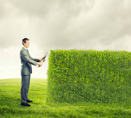 Young handsome businessman cutting green lawn  Greenery concept photo