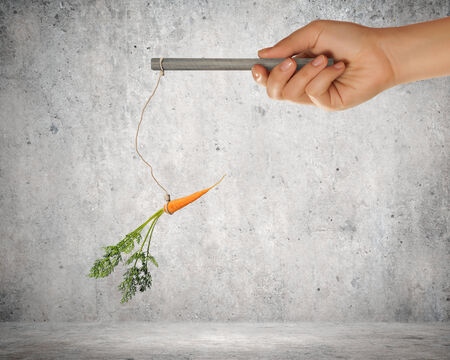 Close up of hand holding stick with carrot dangling on rope photo