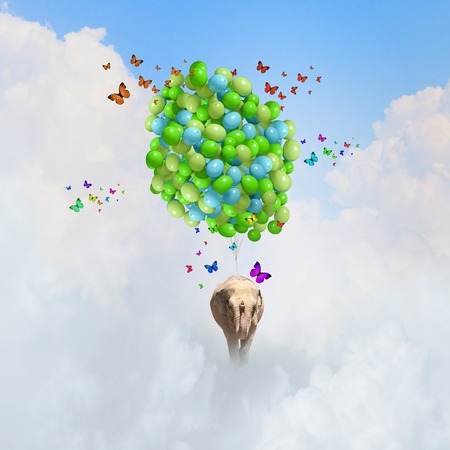 Elephant flying in sky on bunch of colorful balloons photo