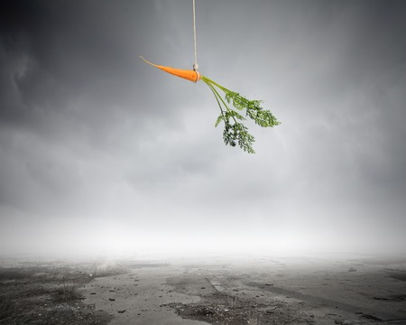 Conceptual image of carrot dangling on rope photo