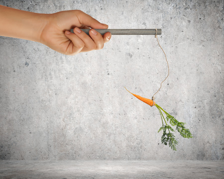 entice: Close up of hand holding stick with carrot dangling on rope
