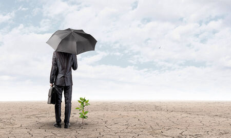 Rear view of businessman with umbrella protecting sprout photo
