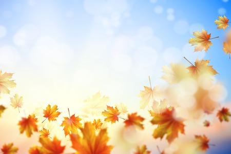 Achtergrond met herfstbladeren Plaats voor tekst