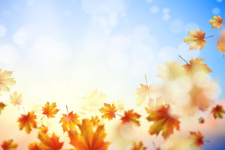 Background image with autumn leaves  Place for text