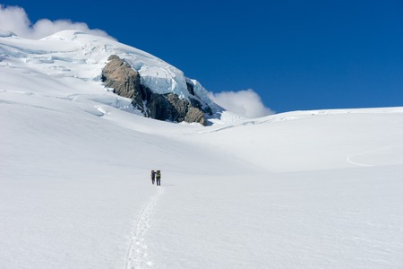 fox glacier: People walking among snows of New Zealand mountains