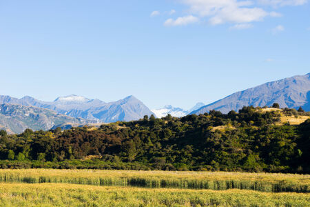 Natural landscape of New Zealand alps and field photo