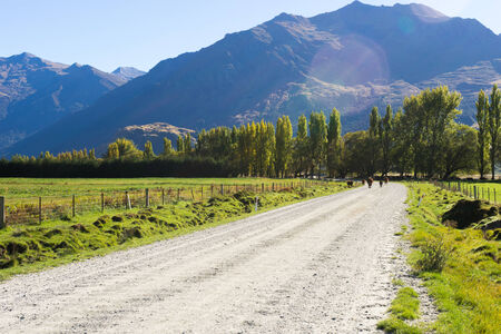 Natural landscape of New Zealand alps and road photo