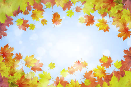 Background conceptual image with autumn leaves  Place for text photo