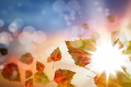 Background conceptual image with autumn falling leaves Stock Photo