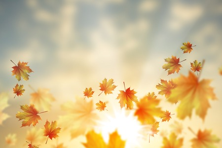 leaves falling: Background conceptual image with autumn falling leaves Stock Photo