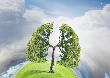 Conceptueel beeld van groene boom gevormd als menselijke longen