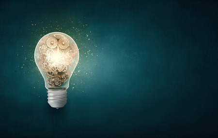 people human mind: Conceptual image with light bulb and gears inside