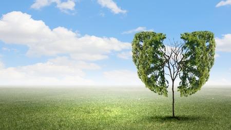 persona respirando: Imagen conceptual del �rbol verde con forma de pulmones humanos