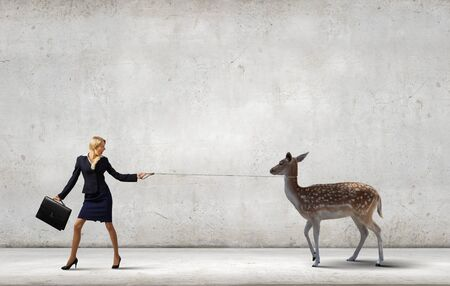 positivism: Young pretty businesswoman holding deer on lead