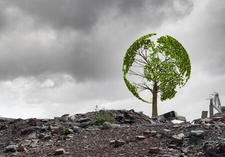 Conceptual image of green tree standing on ruins Stock Photo