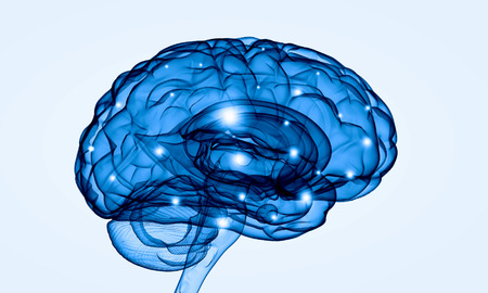 Concept of human intelligence with human brain on white background