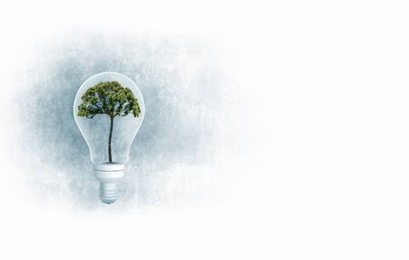 ecological problem: Ecology concept with green tree inside of light bulb