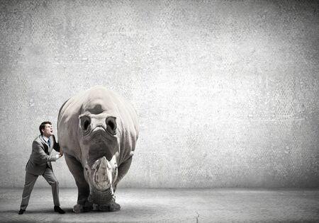 nashorn: Geschäftsmann, der Versuch, große Nashorn bewegen