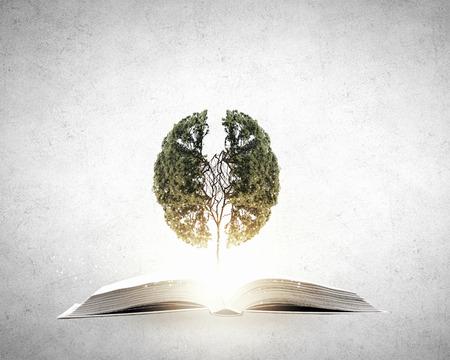 Conceptueel beeld met groene boom groeit uit boek