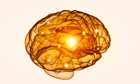 losing knowledge: Science image with human brain on white background