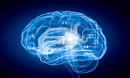 brain function: Science image with human brain on blue background