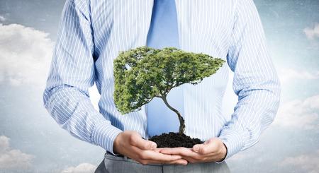 자연 보호의 상징으로 손바닥에있는 나무