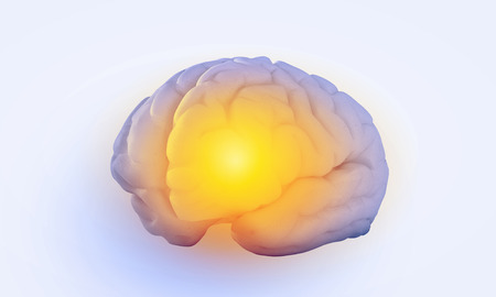 losing memory: Science image with human brain on white background