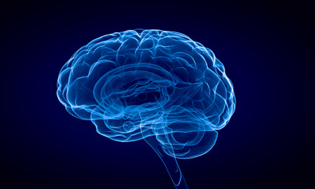 humans: Science image with human brain on blue background