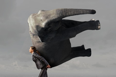 Young pretty elegant businesswoman lifting heavy elephant