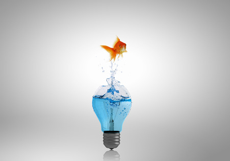 Goldfish jumping of light bulb filled with water