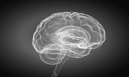losing knowledge: Science image with human brain on gray  Stock Photo