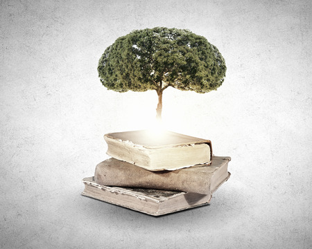 education background: Conceptual image with green tree growing from book