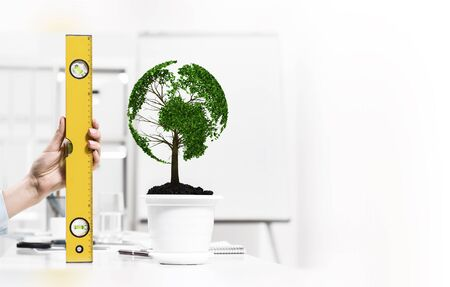 profiting: Close up of human hand measuring plant in pot with ruler