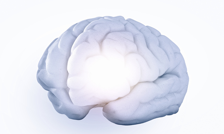 losing knowledge: Science image with human brain on white