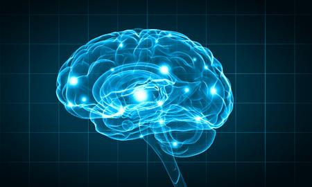 cerebro: Concepto de la inteligencia humana con el cerebro humano sobre fondo azul