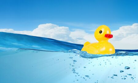 yellow duck: Yellow rubber duck toy floating in water Stock Photo
