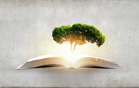 knowledge tree: Conceptual image with green tree growing from book