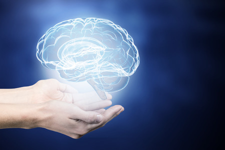 strengthen hand: Close up of human hand holding brain Stock Photo