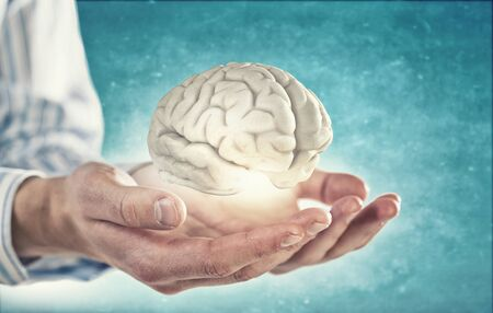 Close up of human hand holding brain Stock Photo