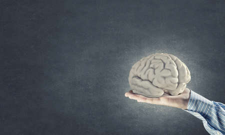 strengthen hand: Close up of businessman hand holding brain Stock Photo