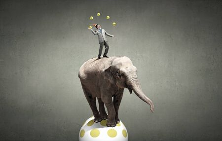 Young businessman in cap standing on elephant and juggling with balls Stock Photo