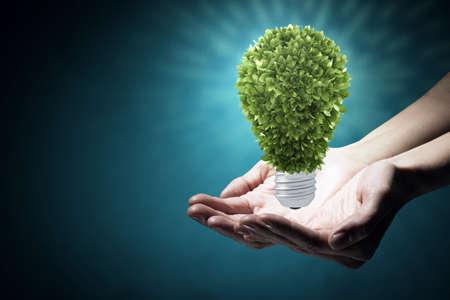 economize: Hand holding eco light bulb energy concept