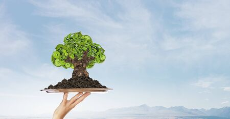 environmental conservation: Environmental concept with hand hold green tree of industrial gear