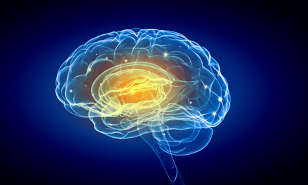 medical imaging: Concept of human intelligence with human brain on blue background Stock Photo