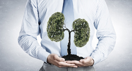 clean lungs: Close up of businessman holding in hands green tree concept