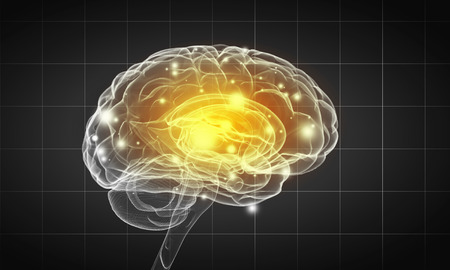 losing memory: Science image with human brain on gray background Stock Photo
