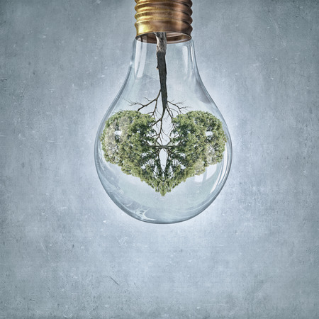 growing inside: Glass lightbulb with green tree growing inside Stock Photo