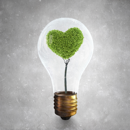 growing inside: Glass lightbulb with love shaped green tree growing inside