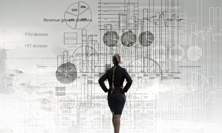 educator: Rear view of businesswoman looking at infographs on wall Stock Photo