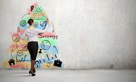 cement solution: Back view of businesswoman drawing business sketch on wall